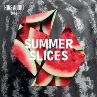 Various Artists - Summer Slices — сборник