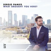 What Brought You Here? — Sergio Pamies