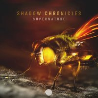 Supernature — Shadow Chronicles