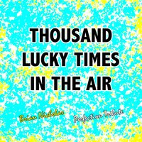 Thousand Lucky Times in the Air — Brian Nicholas