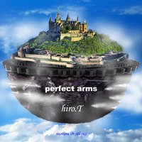 PERFECT ARMS — hiro.T