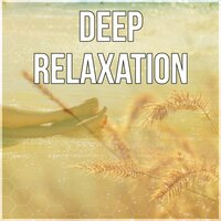 Deep Relaxation - Stress Relief, Spiritual Healing, Hypnosis, Nature Sounds, New Age Music, Pure Relaxation, Mindfulness Meditation — Serenity Music Relaxation