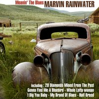 Moanin' the Blues: 20 Diamonds Mined from the Past — Marvin Rainwater