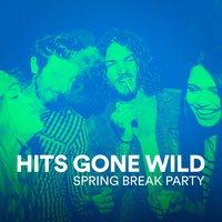 Hits Gone Wild (Spring Break Party) — Ultimate Dance Hits, Party Hit Kings, Ultimate Party Jams