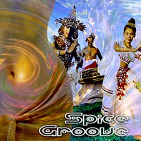 Spice Groove — Ariel Kalma, Various Music Mosaic Artists
