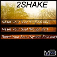 Reset Your Soul — 2Shake