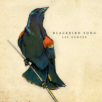 Blackbird Song — Lee DeWyze