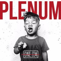Plenum — ONE ZIM