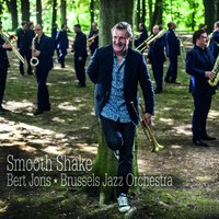 Smooth Shake — Bert Joris, Brussels Jazz Orchestra