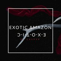 Exotic Amazon — DJ Casper