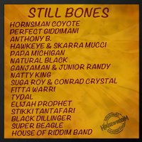 Still Bones Selection — сборник