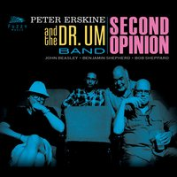 Second Opinion — John Beasley, Peter Erskine, Bob Sheppard, Talley Sherwood, Peter Erskine and the Dr. Um Band, Mark Hornsby