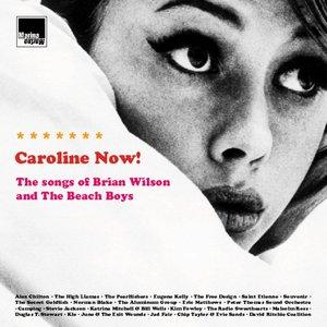 The Aluminum Group - Caroline, No