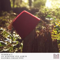 TESSERACT: An Acoustic Fez Album — Materia Collective