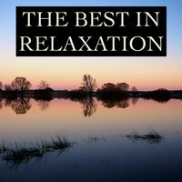 The Best in Relaxation - Timeless Nature & Water Melodies for Ultimate Stress Relief, Mindfulness, Deep Sleep, Study Concentration, Yoga, Meditation Focus and Better Mental Health — Relajación & Agua del Mar