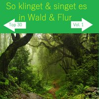 Top 30: So klinget & singet es in Wald & Flur, Vol. 1 — сборник