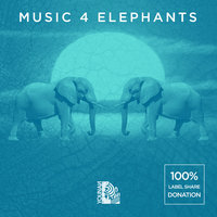 Music 4 Elephants — сборник