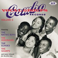 Combo Vocal Groups Vol 3 — сборник