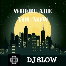 Where Are You Now — DJ Slow