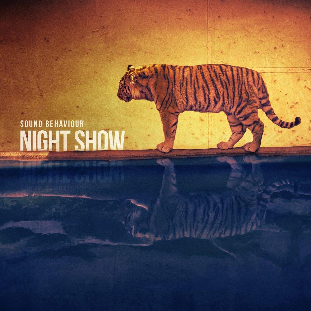 showcase podcast listening behaviour - 1000×1000