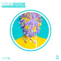 Freak Show, Vol. 13 - Progressive House & Electro Session — сборник