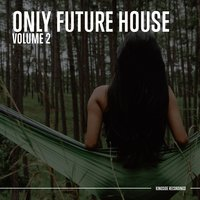 Only Future House — сборник