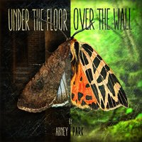 Under the Floor, Over the Wall — Abney Park