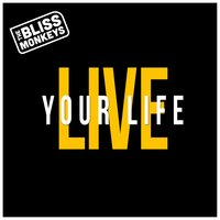 Live Your Life — The Bliss Monkeys