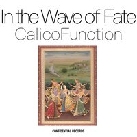 In the Wave of Fate — Calico Function