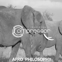 Afro Philosophy — Bunny House