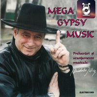 Mega Gypsy Music, Vol. II — сборник