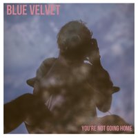 You're Not Going Home — Blue Velvet