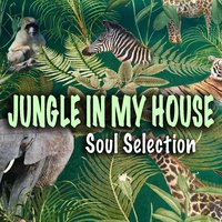 Jungle In My House Soul Selection — сборник