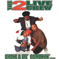 Shake A Lil' Somethin' (clean) — The 2 Live Crew
