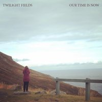 Our Time Is Now — Twilight Fields