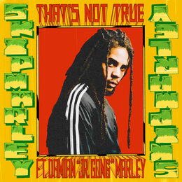 That's Not True — Skip Marley, Damian Marley