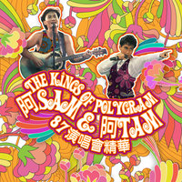 The Kings Of Polygram A Sam & A Tam 87 Yan Chang Hui Jing Hua — Alan Tam, Sam Hui