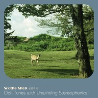 Oak Tunes with Unwinding Stereophonics — Soothe Shop
