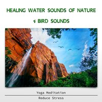 Healing Water Sounds of Nature & Bird Sounds - Yoga Meditation, Reduce Stress — Sound Effects Zone
