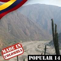 Made In Colombia / Popular / 14 — сборник