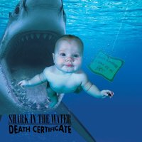 Death Certificate — Shark in the Water