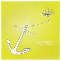 Say Goodbye — Liz Janes