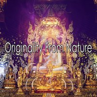 Originality From Nature — Ambiente