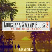 Swamp Blues 2 — Various Artists - JSP