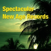 Spectacular New Age Records — сборник