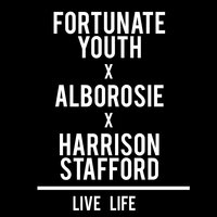 Live Life — Fortunate Youth, Alborosie, Harrison Stafford