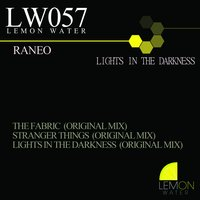 Lights in the Darkness — Raneo