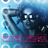 Butterfly Grooves — сборник