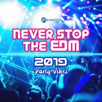 Never Stop the EDM: 2019 Party Vibes — сборник