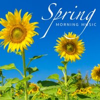 Spring Morning Music — сборник